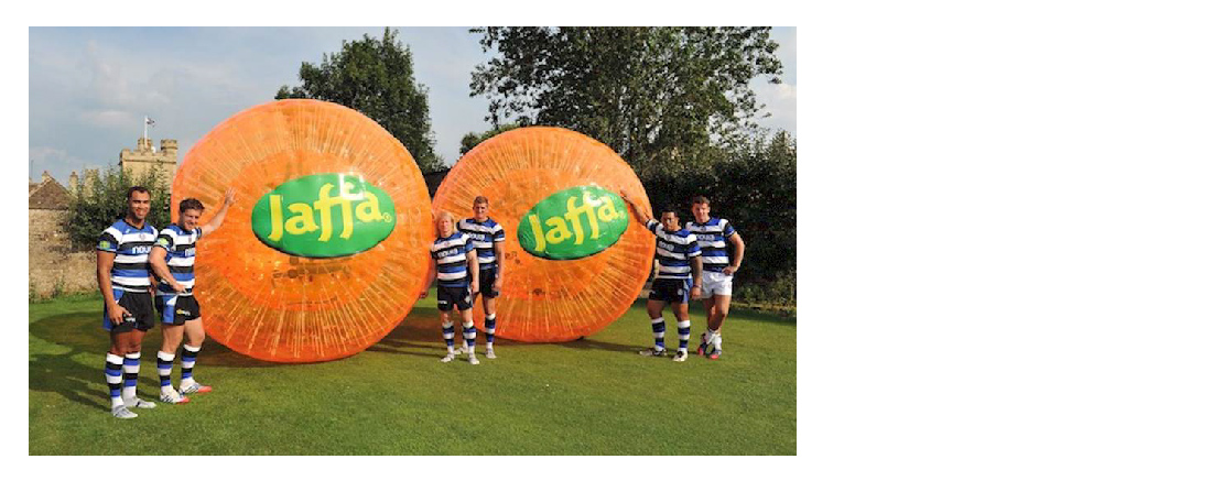 Jaffa & Sale Sharks